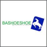 Bashoeshoe Investments & Projects