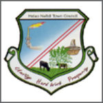 Helao Nafidi Town Council